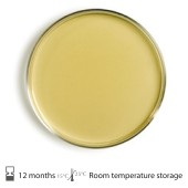 Tryptic Soy Agar Contact plate Irradiated